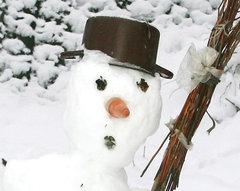 На Воробьевых горах пройдет (Art) битва снеговиков