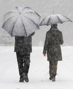 Зима закончится оттепелью, в марте могут ударить морозы