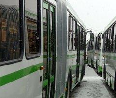Автобусы будут следить за машинами