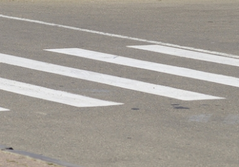 Зебру  приподнимут над дорогой