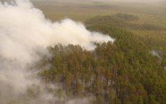 Москве снова грозит смог от пожаров