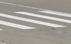Зебры  оснастят голограммами пешеходов